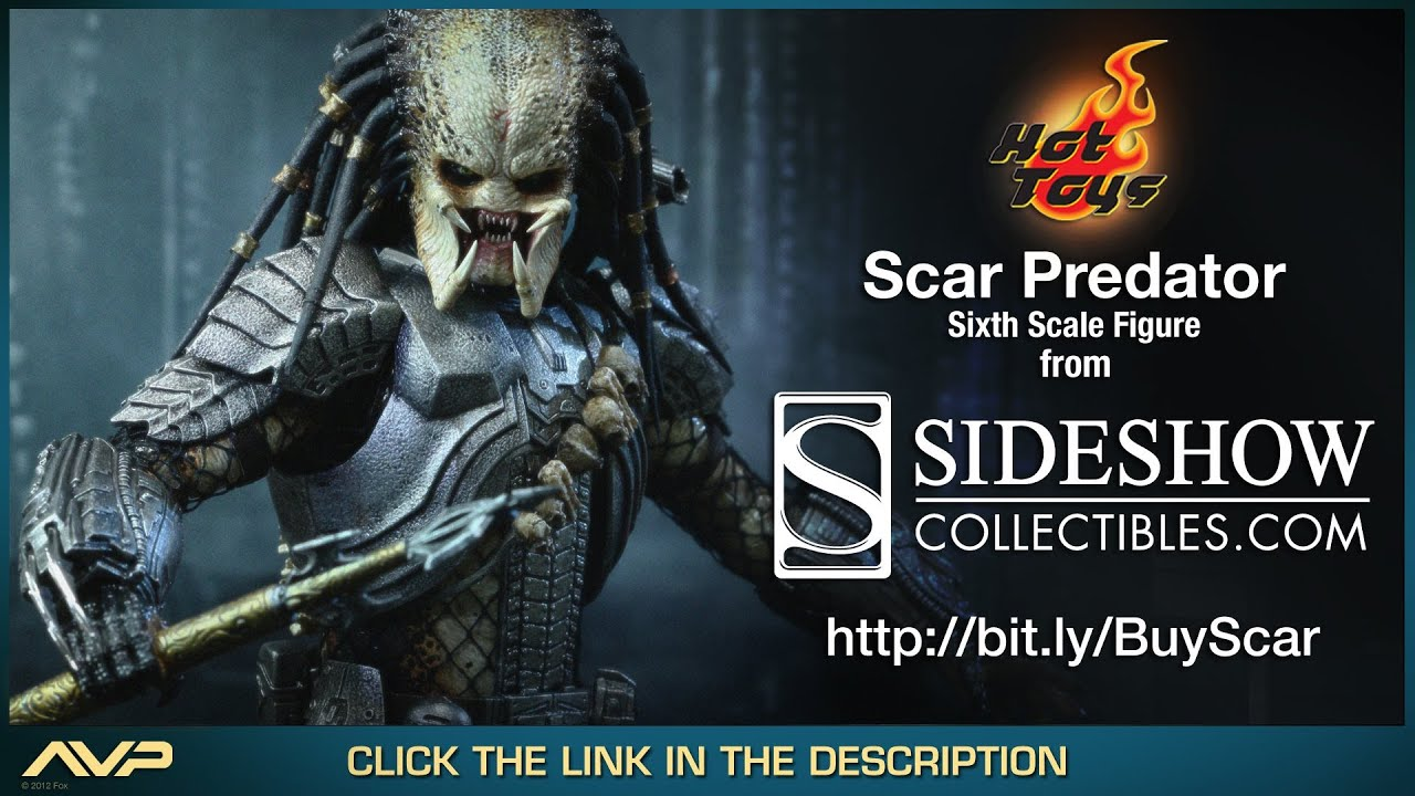 AVP Alien VS Predator Hot Toys Scar Movie Masterpiece 1 6 Scale Collectible Figure Review