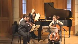 Haydn Piano Trio in E Major Hob. XV:28  2nd movement: Allegretto