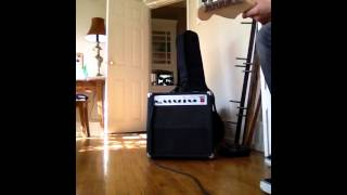 Roland 405 guitar amp - Lyle Johnson
