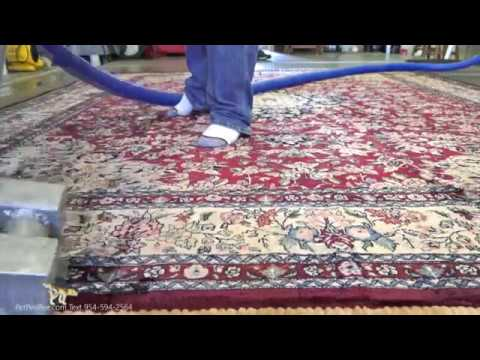 Cleaning A Wool Rug From The Urine Smell