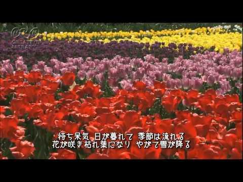 ありがとう ( 石坂智子 ) / 歌:takimari 演奏:わいずふぁくとりい