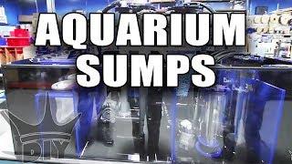 Aquarium filters and equipment - EXCLUSIVE TOUR
