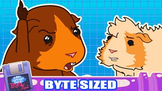 "Guinea Pig vs. The Law in ""That"