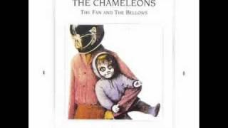 THE CHAMELEONS ~ Nostalgia