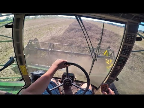 GoPro/driver view - John Deere 2254 Hillmaster - sklizeň řepky