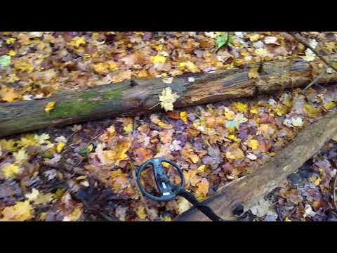 Metal Detecting Back to the Forest with the macro CF77