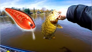 The BEST Crankbait EVER? -- (Strike King 1.5 Fishing)