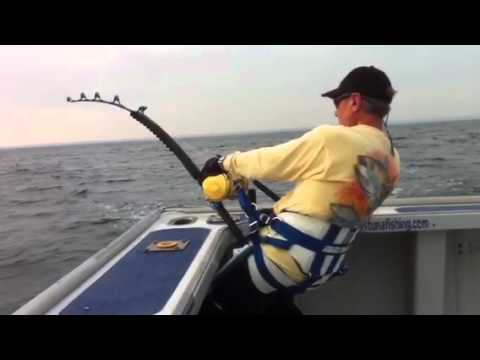 Tony's Bluefin Tuna Fishing PEI  Dennis Braid fighting a 900 Giant Bluefin Tuna