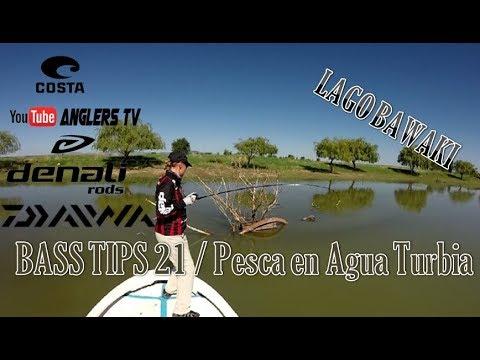 Bass TIPS 21.- PESCA DE LOBINA EN AGUAS TURBIAS DESDE LAGO BAWAKI
