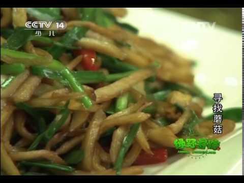 20140312 绿野寻踪 西藏林芝地区