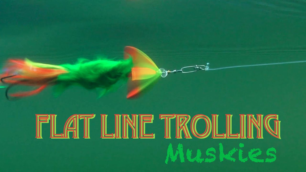 Flatline Trolling for Muskies