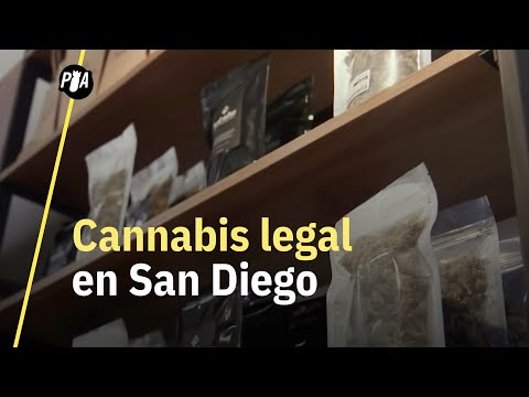 Así es comprar cannabis legal en San Diego, California