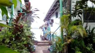 Bocas Del Toro, Cocomo by the Sea In Isla Colon Bocas Town