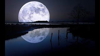 金豚、月へ行ってきます【Kerbal space program】