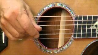 breedlove king koa at wolfe guitars