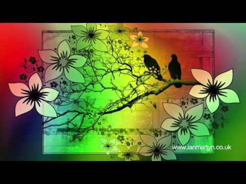 Dance With Spirits Part 1 -  Spirit of Nature -  Ian Martyn & Friends