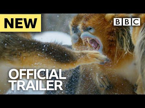Seven Worlds, One Planet: Trailer - BBC