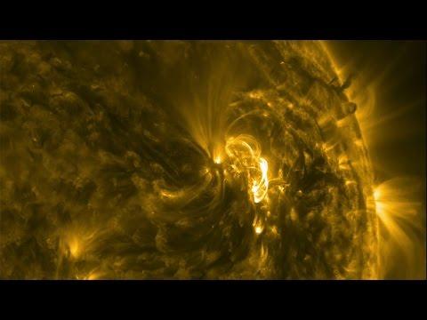Solar activity in June 2015