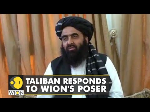 WION's Anas Mallick asks Taliban on their stand on Kashmir issue | Afghanistan-India Relations