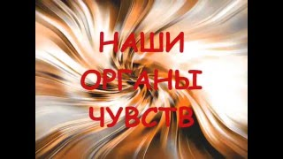 Презентация на тему- ОРГАНЫ ЧУВСТВ