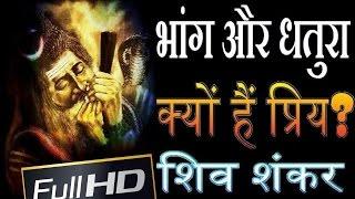 भांग और धतुरा भगवान शिव शंकर को क्यों हैं प्रिय lord shiva bhang relationship