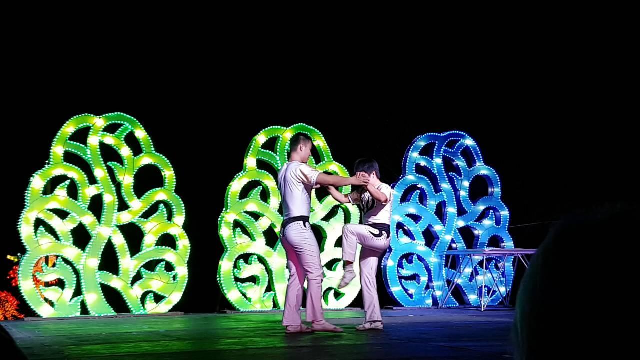 China Lights Exhibit 2016 At The Boerner Botanical Gardens Milwaukee Wisconsin Youtube