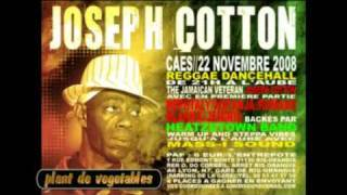 Joseph Cotton-Plant De Vegetables (Mother Long Tongue Riddim 2002)