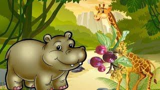 Животные для детей. ЭХ, БЕГЕМОТИК!!! Несъедобные ягоды. Мультфильмы про животных для детей