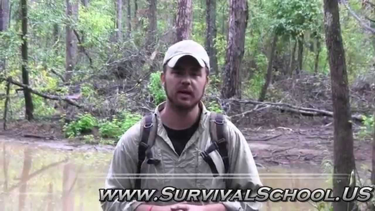 Scout survival games part 2 survival fishing trip youtube for Survival fishing games