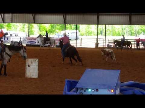Hip #2 BANDIT - Jake Clark Mule Days Roping Run 1