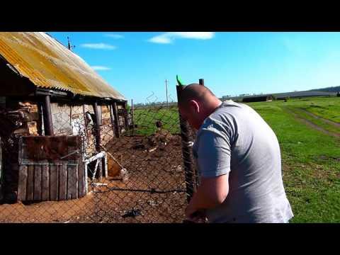 Семейное автопутешествие в Горный Алтай в августе 2016 го