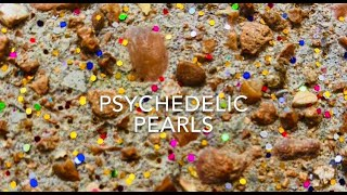 Journey is a Verb presents Psychedelic Pearls Episode1
