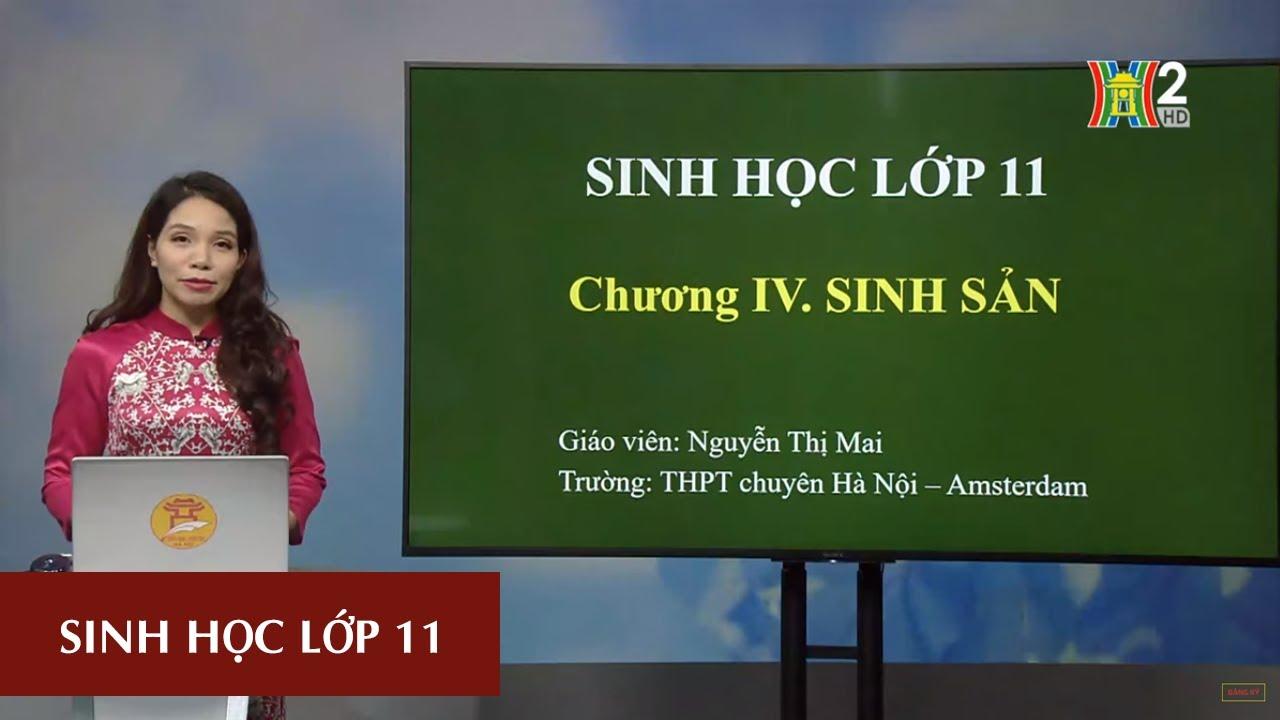 MÔN SINH HỌC – LỚP 11 | CHỦ ĐỀ: SINH SẢN Ở THỰC VẬT | 15H45 NGÀY 25.04.2020 | HANOITV