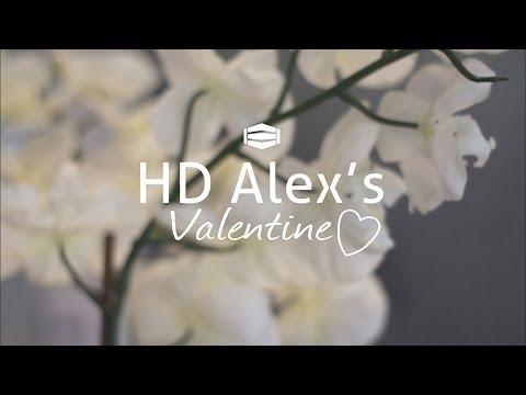 HD Alex's Valentine