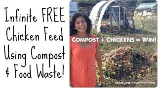 How to Feed Chickens Using Compost and Food Waste!