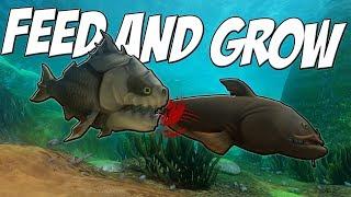 ОГРОМНАЯ ПИРАНЬЯ-ДИНОЗАВР УБИЛА СОМА | Feed and Grow: Fish