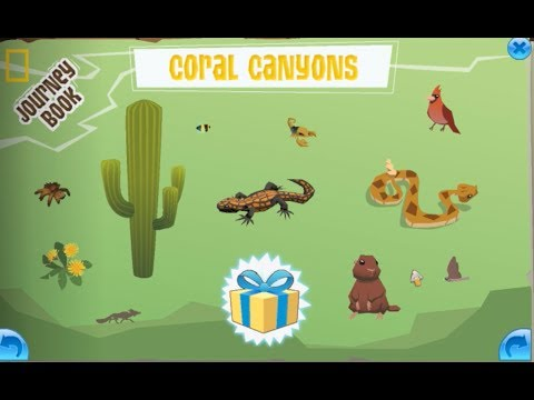 Coral Canyons – Animal Jam Journey Book Cheat Guide