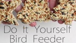 Bird Feeders Kids Can Make: The Easy Way to Make a Bird Feeder