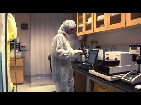 Career Spotlight: Bioengineer