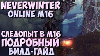 Следопыт в М16. Подробный Гайд | Neverwinter Online | Mod 16