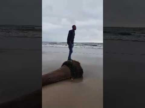 Gabriel in port harcourt beach
