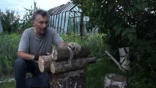 Как высушить древесину дома.