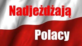 Wreszcie polskie czołgi !!! 25TP zakupiony