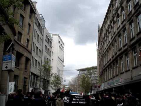 Frankfurt Anti-Fur Industry Protest