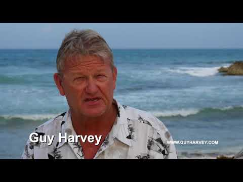 Guy Harvey and Critical Research