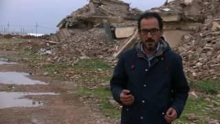 ضباط من الجيش العراقي السابق يحاربون إلى جانب تنظيم الدولة الاسلامية في الموصل