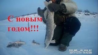 Клевая рыбалка с Новым годом! Якутия Yakutia
