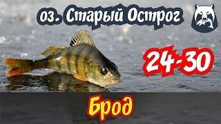 РУССКАЯ РЫБАЛКА 4! БРОД, т. 24-30! ОЗ. ОСТРОГ