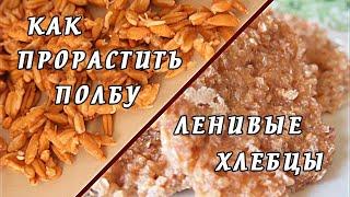 # Как прорастить ПОЛБУ/Ленивые хлебцы