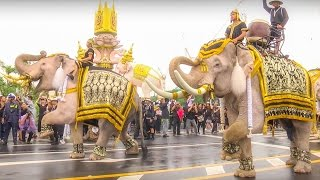Elephant Thai For  His Majesty The Late King Bhumibol Adulyadej of Thailand Full Hd 1080p